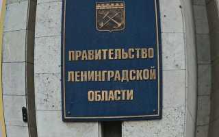 Прожиточный минимум в Ленинградской области в 2019 году